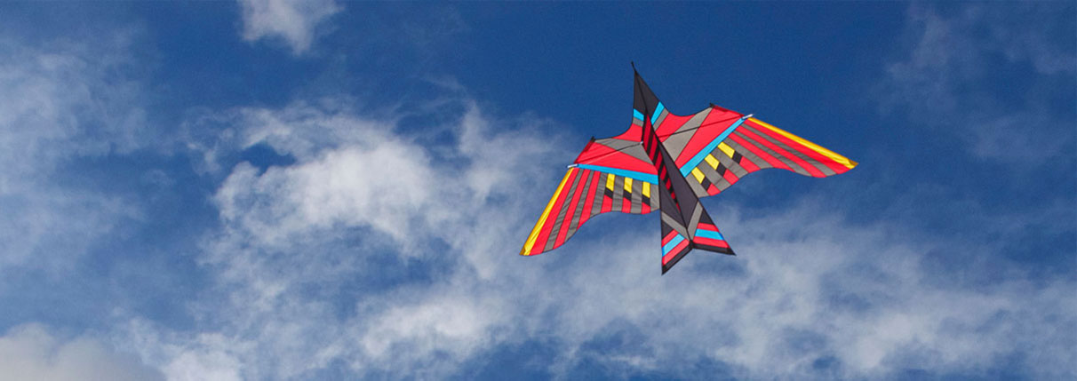 Creative Kite Designs