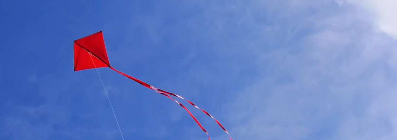Fighter Kites