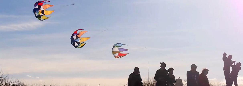 Wind Art