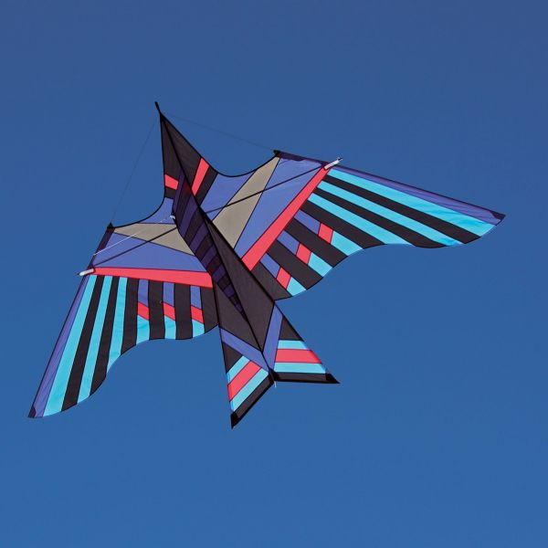 Itw George Peters Cloud Bird Kite Buy At Into The Wind Kites Buy At Into The Wind Kites