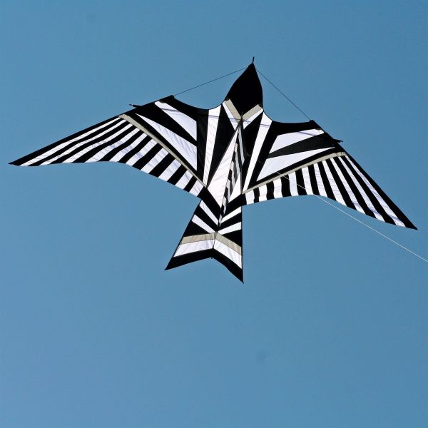 Itw George Peters Sky Bird Kite Buy At Into The Wind Kites Buy At Into The Wind Kites