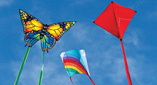 Best Kites for Beginners