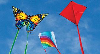 Best Kites for Beginners